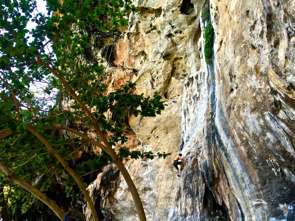 Rock climber in Krabi